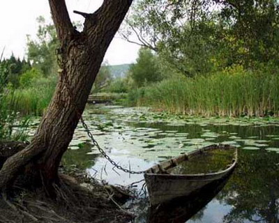 PARK OF NATURE - BIRD RESERVE HUTOVO BLATO  HUTOVO BLATO, A HABITAT TO HUNDREDS OF PLANT AND ANIMAL SPECIES, HAS BEEN WELL KNOWN SINCE THE ANCIENT TIMES. FOLLOWING THE WORLD WAR II, THE REGION WAS PROTECTED, INITIALLY AS AN ELITE HUNTING GROUND AND LATER DECLARED A BIRD RESERVE.  PARTS OF THE PARK HAVE SUBSEQUENTLY BEEN CLOSED FOR FISHING AND HUNTING. IN 1971, HUTOVO BLATO WAS ADDED TO THE RAMSAR LIST OF WETLANDS OF INTERNATIONAL IMPORTANCE, AND IN 1980 IT BECAME PART OF THE PROJECT TO PROTECT MEDITERRANEAN WETLANDS.  HUNTING WAS ALLOWED ON THE GROUND OF HUTOVO BLATO UNTIL MARCH 30, 1995 WHEN IT WAS DECLARED A NATIONAL PARK. IN 1998, THE INTERNATIONAL COUNCIL FOR BIRD PRESERVATION ADDED HUTOVO BLATO TO THE LIST OF BIRD HABITATS OF INTERNATIONAL IMPORTANCE. THE PARK IS ALSO REGISTERED BY THE UNESCO AS A NATURAL HERITAGE SITE.